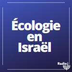La chronique écologie en Israël