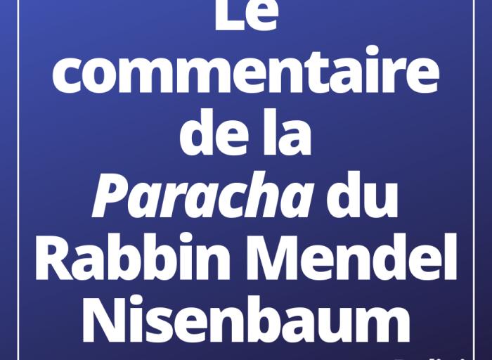 le commentaire de la paracha du rabbin Mendel Nisenbaum